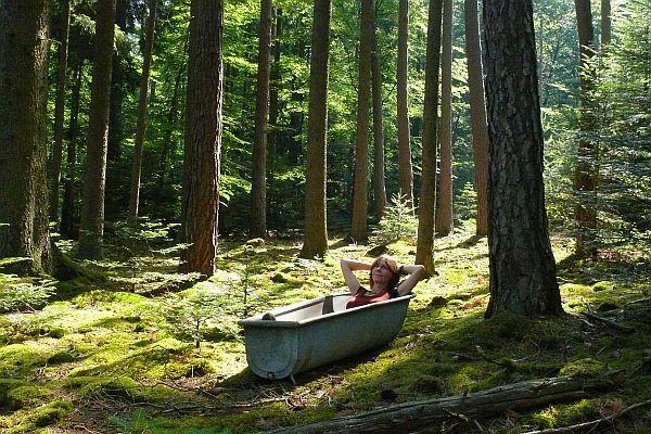 """""""Baia de pădure """" 2"""